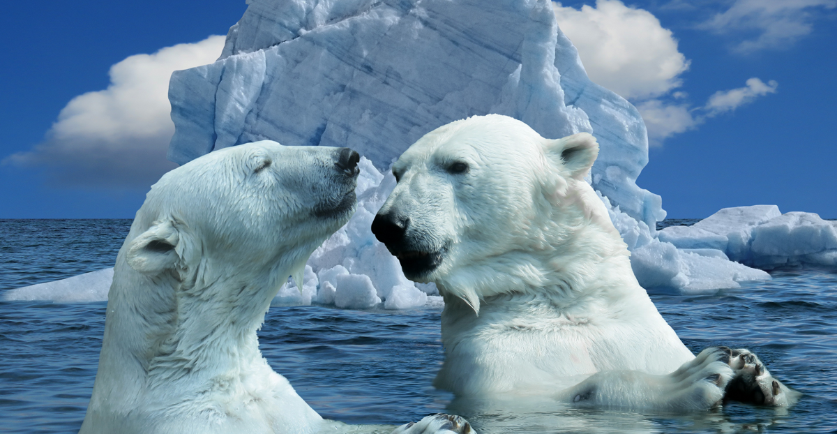 Use Icebreakers to Help You Start Your Meetings Off Right - Docket